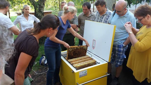 Varroa-controller prednaska7